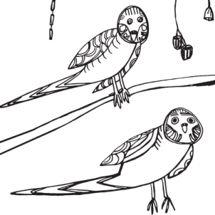 Colouring Sheet by Cassie Leatham –</br>Mr Beaky The Blue Budgie
